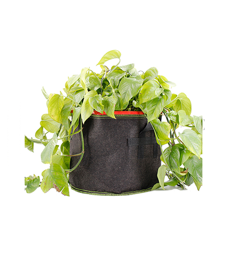 5 Pack 3 5 7 10 15 20 25 30 100 Gallon Non Woven Planter Grow Bags Aeration Fabric Pots Garden Potat